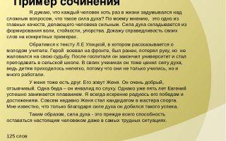 Сочинение: проблема силы духа (по тексту грековой)