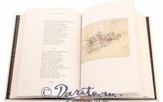 Рецензия на книгу «евгений онегин» (а. с. пушкин)
