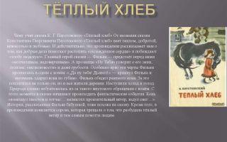 Краткое содержание произведения «тёплый хлеб» для читательского дневника (к. паустовский)