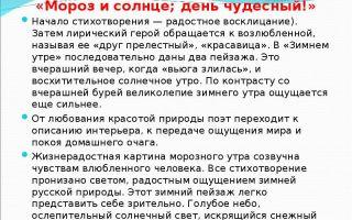 Анализ стихотворения а.с. пушкина «зимнее утро»