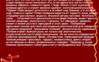 Отзыв о романе «герой нашего времени» для читательского дневника (м. ю. лермонтов)