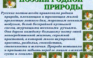 Тема природы в стихах русских поэтов