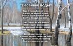 Анализ стихотворения ф. и. тютчева «весенние воды»