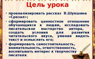 Отзыв о рассказе «срезал» для читательского дневника (в. шукшин)
