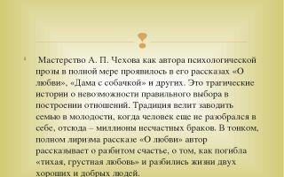 Отзыв о рассказе чехова «о любви»