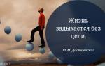 Как вы понимаете фразу достоевского «жизнь задыхается без цели»?