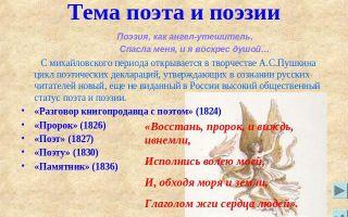 Тема поэта и поэзии в стихах русских авторов