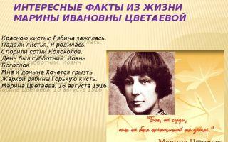 Краткая биография м. и. цветаевой: только главное и интересное