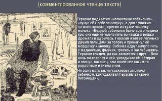 Кратчайшее содержание «муму» для читательского дневника (и. с. тургенев)