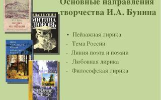 Основные темы творчества и. бунина