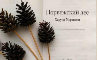 Верность и измена в романе «евгений онегин»