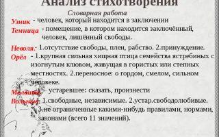 Анализ стихотворения пушкина «узник»