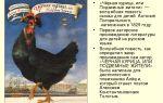 Кратчайшее содержание повести «черная курица, или подземные жители» для читательского дневника (а. погорельский)