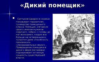 Салтыков-щедрин, «дикий помещик»: анализ