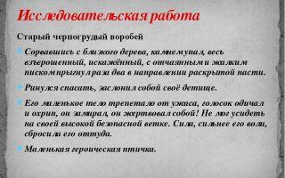 Анализ произведения тургенева «воробей»