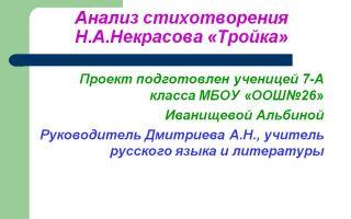Анализ стихотворения «тройка» (н. а. некрасов)