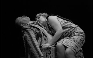Трагифарс «лысая певица»: в чем смысл пьесы?