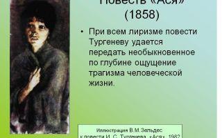 Краткое содержание произведения «ася» по главам (и. с. тургенев)