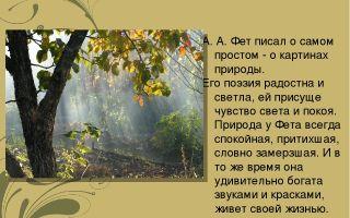 Почему фет считал природу средством исцеления «скорбящей души»?
