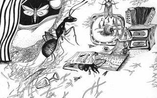 Жизнь насекомых или фантасмагория человеческих образов
