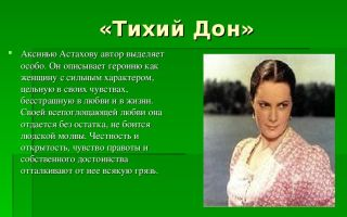 Образ степана астахова в романе м. шолохова «тихий дон»