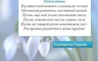 Кратчайшее содержание рассказа «подснежник» для читательского дневника (и. бунин)