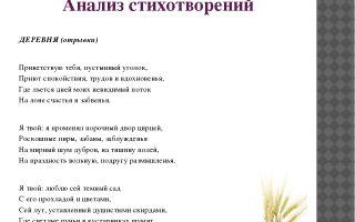 Анализ стихотворения а. с. пушкина «деревня»