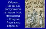 Образ народного заступника в поэме «кому на руси жить хорошо»