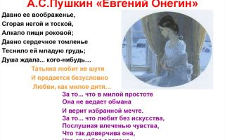 За что пушкин любит онегина?