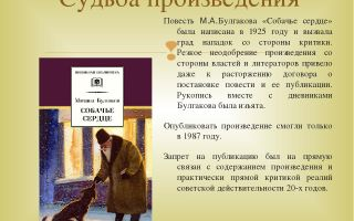 Кратчайшее содержание повести «собачье сердце» для читательского дневника (м. а. булгаков)