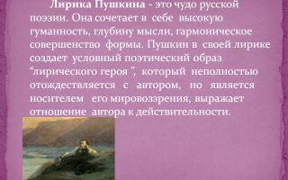 Сочинение на тему: лирика пушкина