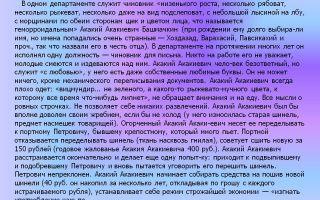 Краткое содержание повести «шинель» н.в. гоголя