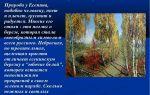 Патриотизм в произведении «левша» (н. лесков)