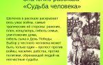 Патриотизм в рассказе м. шолохова «судьба человека»