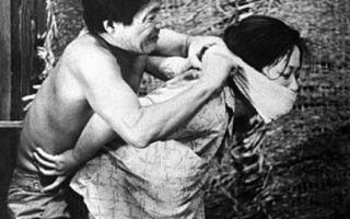 Анализ романа «женщина в песках»