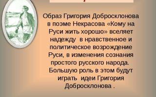 Образ гриши добросклонова в поэме «кому на руси жить хорошо?» (н. некрасов)