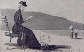 Анализ произведения чехова «дама с собачкой»