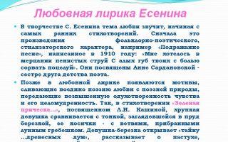 Сочинение: лирика есенина (для 9-11 классов)