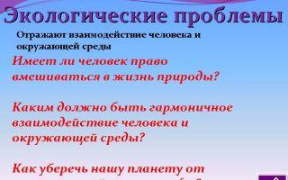 Сочинение: экологические проблемы россии