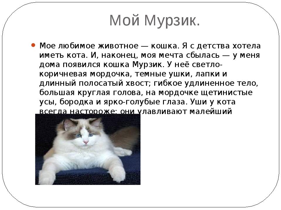 Доклад о моем домашнем животном кошке 5720